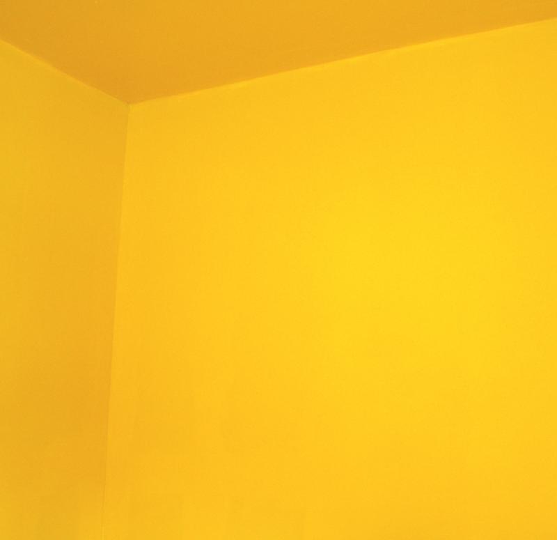 liquid amber.jpg