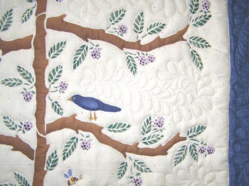 bird.jpg.5e21c51eb94ae181316ff762057b2f72.jpg