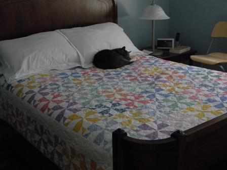 Pinwheel quilt and cat.JPG
