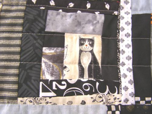 cat.jpg.80db28c10cd879343ff1eb39cb1a51c0.jpg